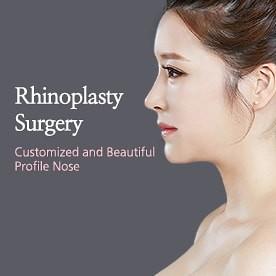 Mega Rhinoplasty Surgery