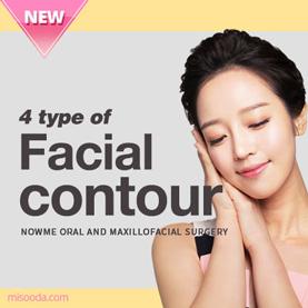 4 type of Facial contour